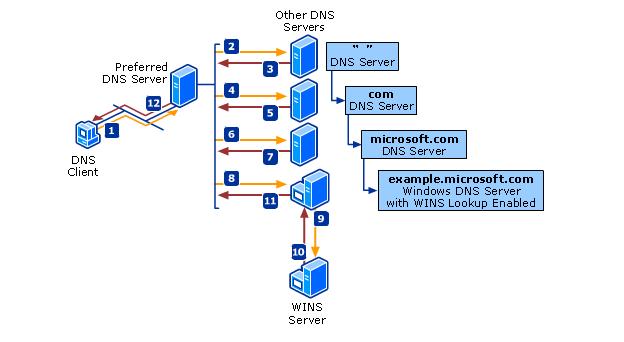 dns-process